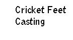 Cricket                 Feet Casting